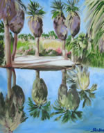 Palms at Agua Caliente