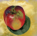 Red Apple Study #1, pastel by Barbara Strelke