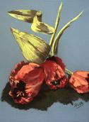 Tulips #1, pastel by Barbara Strelke